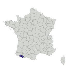 Map_gradient_altitudinal_pyrénéen