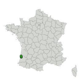 Map_ISLANDES
