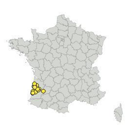 Map_RONDSARMI