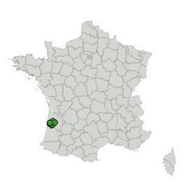 Map_Sponforest