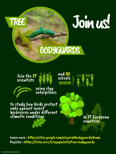 Tree bodyguards_Flyer_EN_2019