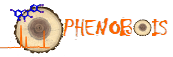 Logo Phenobois
