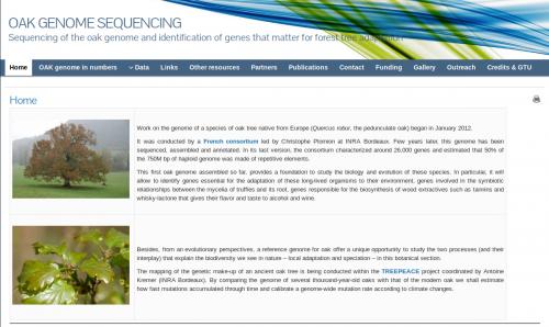 Séquençage du génome du chêne