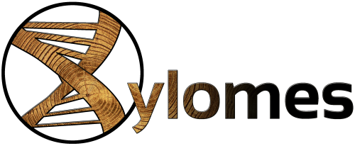 XYLOMES