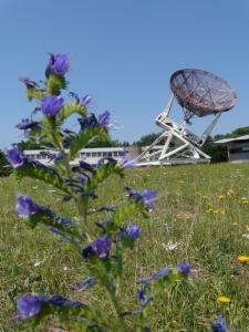 Observatoire de Floirac