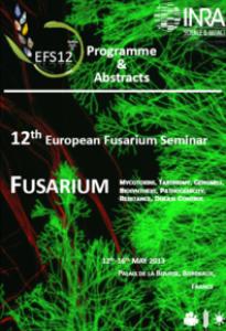 EFS13-2013
