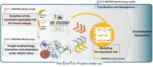 ANR-EvolTox