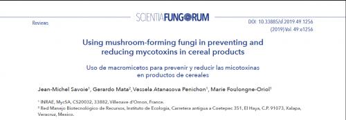 Artcile Scientia Fungorum