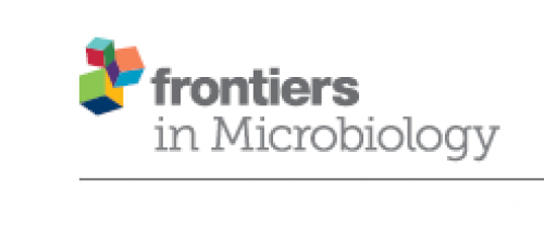 Front Microbiol