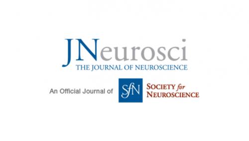 Oméga-3 dès l'adolescence et fonctions cérébrales et comportement chez l'adulte