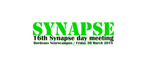Présentation de Fabien Ducrocq à la journée Synapse