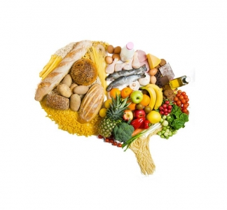 10ème journée de Nutrition & Neurosciences