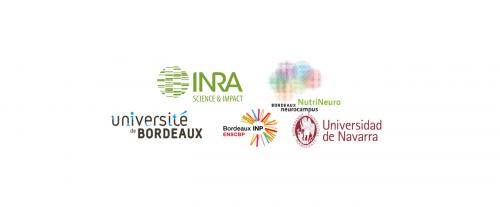 11ème journée Nutrition & Neurosciences