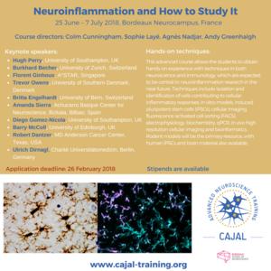 flyer cajal Developmental + Neuroinflammation 2018