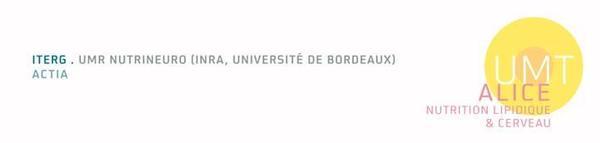 logo UMT ALICE