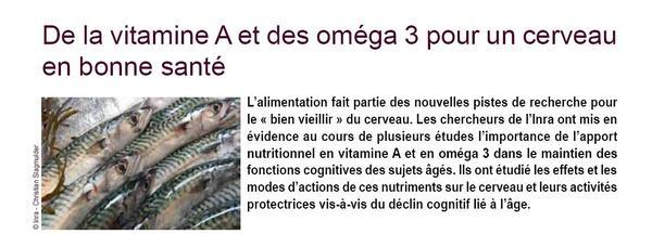 omega3 et cerveau