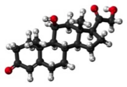 Biochimie des corticoïdes
