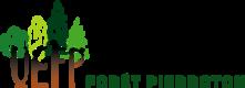 logo UEFP