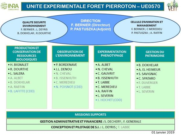UEFP_organigramme_012019
