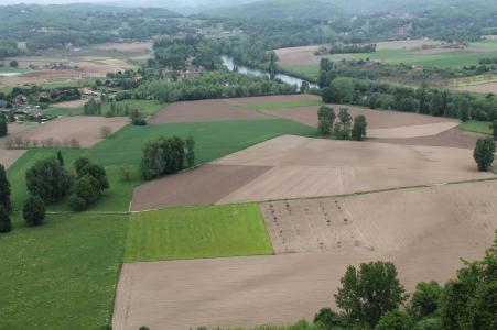 Thèse de doctorat en agronomie globale