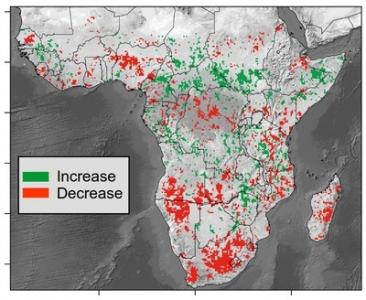 Un nouvel outil pour suivre le bilan carbone de la végétation