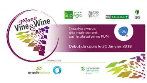 MOOC Vine&Wine