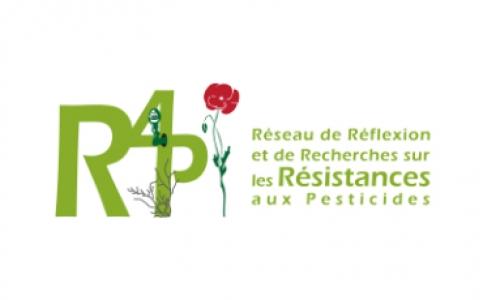 site internet de R4P