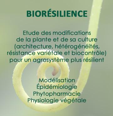 bioresilience
