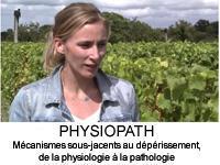 physiopath YT