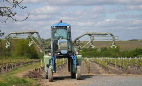 Article paru en juillet 2020 dans Agronomy