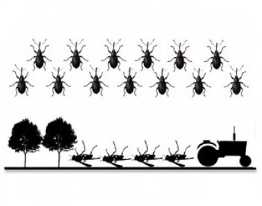 Article à paraitre dans Biological Conservation