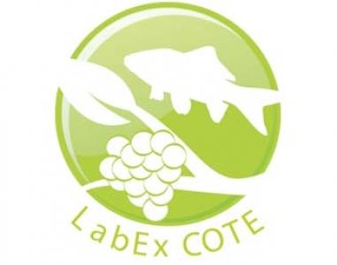 Labex COTE