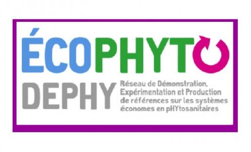 Réseau DEPHY EXPE 2018-2024