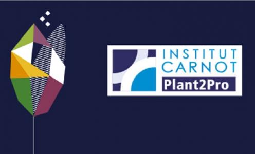 E-phytia et Plant2Pro