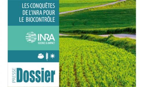 SAVE et le biocontrôle à INRAE