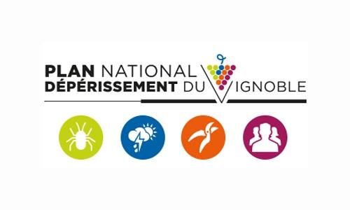 Plan National Dépérissement du Vignoble