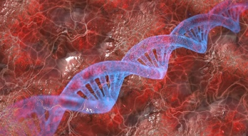 CDD Technicien de 12 mois en Biologie Moléculaire