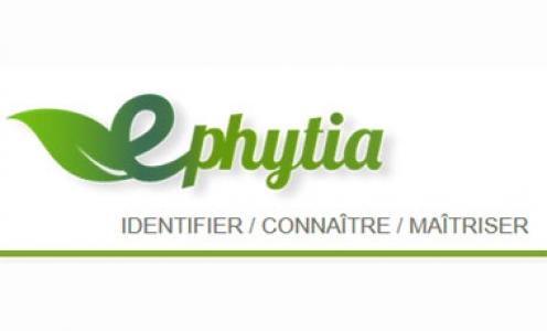 e-phytia 2020