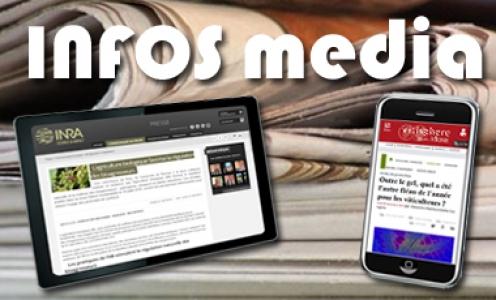 Media-UMR SAVE
