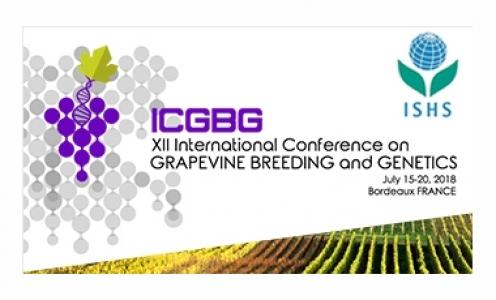 XIIème ICGBG à Bordeaux, 15-20 Juillet 2018