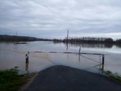 Que d'eau ! que d'eau ! Crue historique de la Garonne à Toulenne